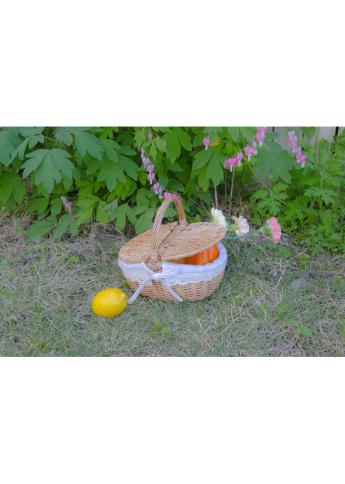LOCHE LACE RIBBON PICNIC BAG