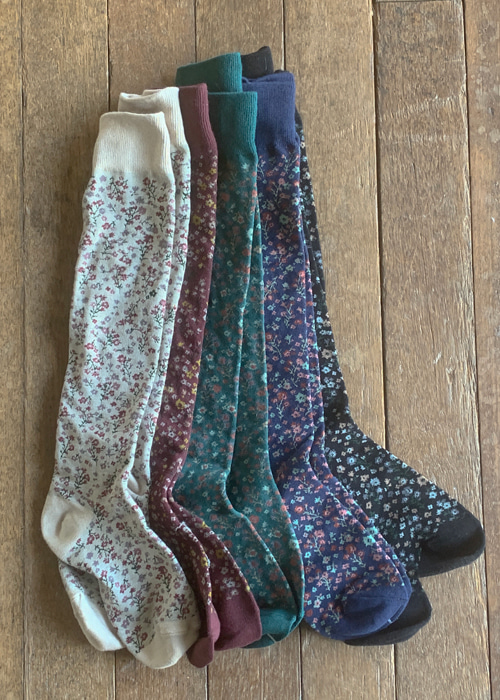 LITTLE GARDEN LONG SOCKS(BEIGE, BURGUNDY, BLUISH GREEN, BLUE, BLACK 5COLORS!)